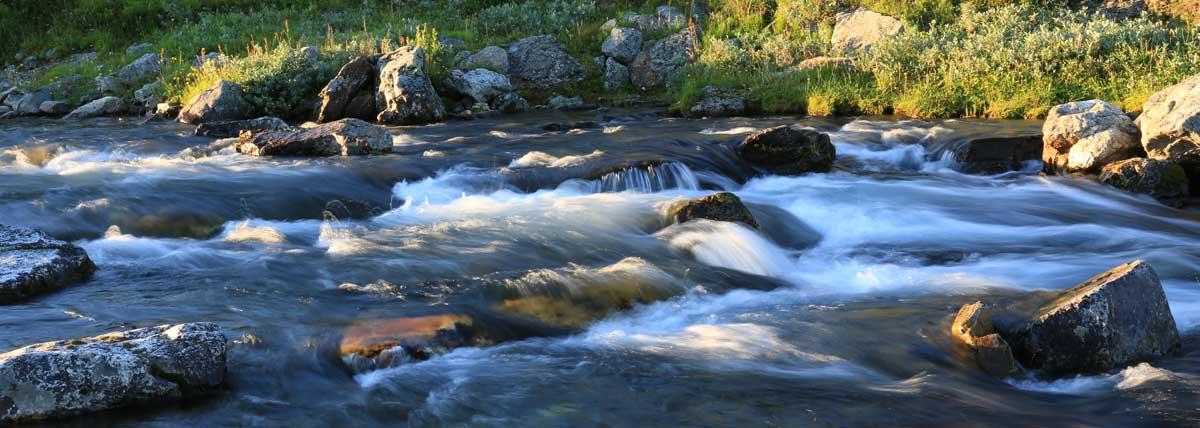 Stones in the rapids. Photo: Christina Wallnér